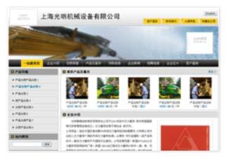 上海晨光龙电器有限责任公司